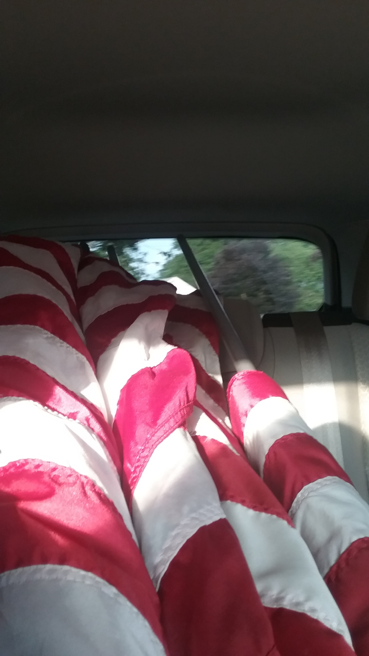 july4-flags-fordescape